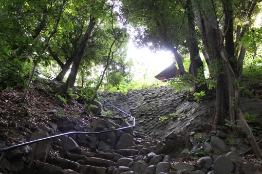 階段 石 岩 重なる 手すり 山 小屋 新緑 見上げる 太陽 光 登る 斜め 木 自然 植物 頂上 日陰 涼しい マイナスイオン 癒し ヒーリング 眩しい 風景 景色アジア 日本 和