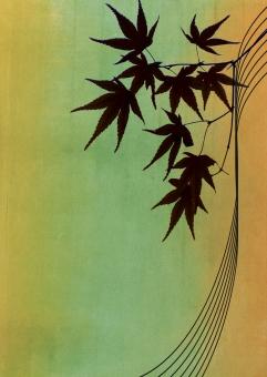 もみじ グリーン ポストカード 緑 紅葉 広告 植物 カエデ 秋 メッセージカード dm 和紙 かえで 色紙 お祝い 和風 和柄 記念日 葉っぱ 葉 招待状 飾り 壁紙 装飾 和 日本 メッセージ 伝統 ギフトカード 枠 テクスチャ 背景 バックグラウンド 模様