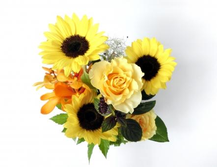 向日葵 ひまわり ヒマワリ 花 夏 黄色 イエロー 花束 メッセージカード 植物 背景白 フラワー バラ 薔薇 グリーティングカード 華やか 鮮やか ギフト 贈り物 プレゼント