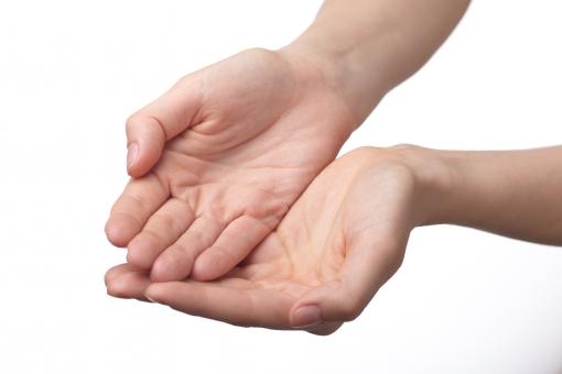 手 両手 手指 手の平 掌 手首 腕 両腕 ハンド 肌 素肌 合わせる 揃える 差し出す あげる 渡す 受ける 受け取る もらう 受け止める すくう すくい上げる 受け手 手中 掌中 素手 ハンドポーズ ポーズ ハンドパーツ パーツ 白バック 白背景