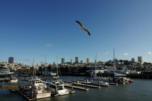 サンフランシスコの写真