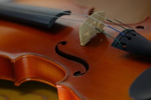 小物 楽器 弦楽器 バイオリン S字 構造 音楽 ミュージック 配信 クラシック 演奏会 コンサート 室内楽 シンフォニー 交響曲 クラッシック プログラム チケット ソロ ソリスト 木 教室 趣味 習い事 教室 練習 レッスン