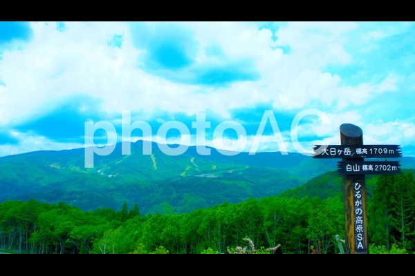 ひるがの高原2の写真