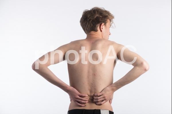 男性の背中8の写真