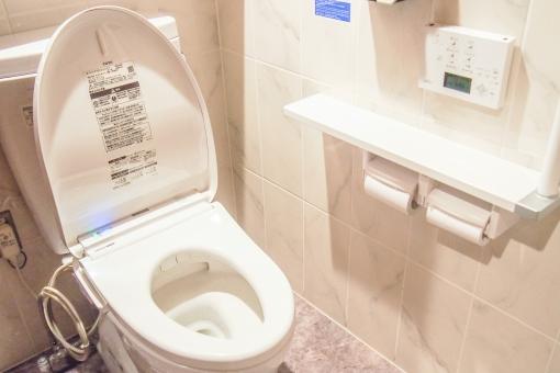 トイレ ウォータークローゼット wc 便所 インテリア ホワイト 店内 ウォシュレット トイレットペーパー センサー ボタン タイル 公衆トイレ スーパー デパート ショッピングセンター ショッピングモール 施設 atohs 明るい きれい 清潔 ハイテク 洗浄
