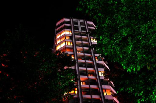 マンション 高層ビル ビル 建物 外観 屋外 外 窓 ガラス  空 景色 壁 外壁 建築 緑 樹木 樹 木 植物 カラー 夜 夜景 住居 部屋 風景