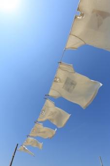 シャツ tシャツ 白 白シャツ 下着 干す 乾かす 乾燥 空 青空 晴れ 青 洗濯 洗濯物 衣類 服 半袖 半そで ティーシャツ 屋外 無人 青色 快晴 洗濯バサミ 洗濯ばさみ 洗濯挟み ランドリー ピンチ クリップ 家事 生活 物干し 吊る 吊るす 白色 吊す 風 風景 天気 ロープ 人物なし 日本 太陽