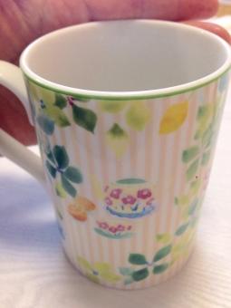 食べ物 温かい 手のひら 飲み物 ぬくい ミルクティー マグカップ ぬるい レモンティー コップ 温度 ホット コーヒー 温水 冬 珈琲 水 冬向き カフェ ミネラルウォーター 熱い 紅茶 手 お茶 持つ あったかい 掌