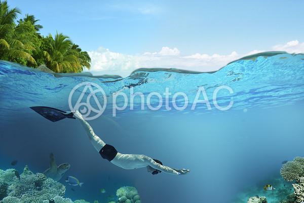 モノフィンを付けてイルカのように泳ぐ男性の写真
