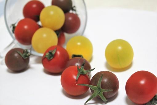 コロコロプチトマトの写真