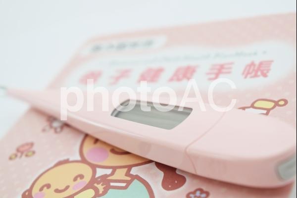 妊娠の写真