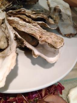 牡蠣 オイスター セレブ 金持ち リタイア リタイヤ リッチ セミリタイア セミリタイヤ 和食 イタリアン フレンチ 海鮮 魚介 おいしい oyster groume rich 殻つき 殻 rawoyster celeb 岩カキ 岩牡蠣