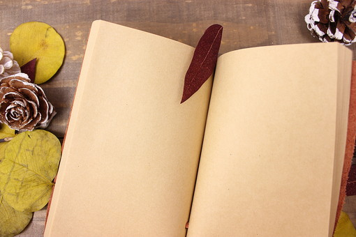 イベント 行事 木 板 木材 ウッド アンティーク 手帳 手帳 ノート 小物 本 レトロ ヴィンテージ ビジネス 葉 葉っぱ 落ち葉 枯れ葉 秋 冬