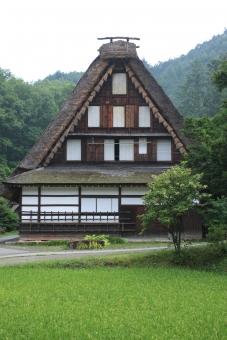 藁葺き屋根 田んぼの中 昔の風景 懐かしさ 飛騨高山