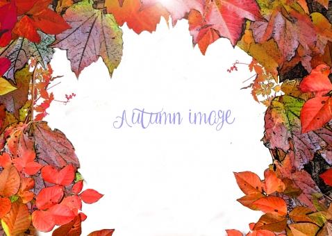 秋のフレームの写真