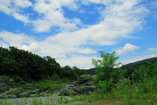 空 雲 青 白 天気 青空 自然 植物 風景 景色 木 樹木 林 森 森林 葉 葉っぱ 緑 山 崖 岩 草原 原っぱ 草 雑草 野生 育つ 成長 伸びる 山並み 鬱蒼 広大 壮大 屋外 無人