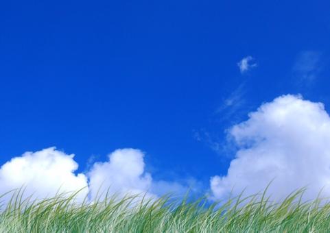 夏の空01の写真
