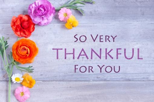 感謝 お礼 御礼 Thank you 有難う 有り難い メッセージカード グリーティングカード メッセージボード メッセージ ボタニカル 花 ラナンキュラス プリムラ プリムラオブコニカ パンジー ラベンダー フレンチラベンダー 英文字 英語 文字 アルファベット