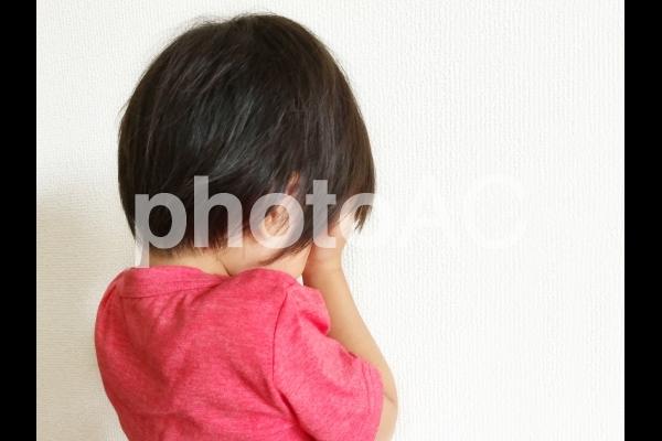 顔を覆う子ども(泣く・拗ねる・人見知り)の写真