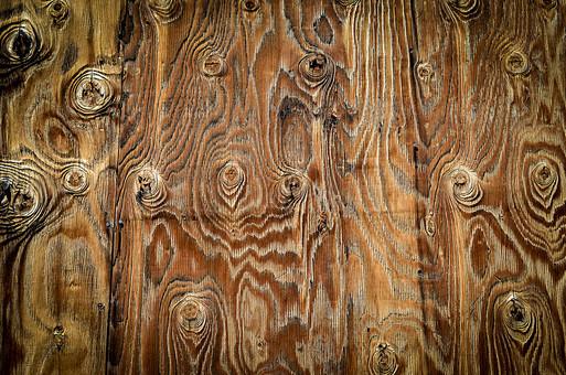 自然 植物 木 樹木 年輪 模様 アート 芸術 美術 曲線 曲がる 丸 刻む 歴史 古い 年月 木材 成長 育つ 茶色 ナチュラル 無人 木目 不規則 幾重 アップ テクスチャ 背景 板 壁