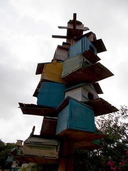 パキスタン 外国 熱帯 南国 南アジア 生き物 空 曇り 天気 芸術 美術 アート オブジェ ディスプレイ 飾る 重ねる カラフル 箱 高い 積む 木 樹木 自然 植物 アップ ローアングル 屋外 室外 風景 景色 景観 無人