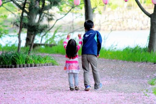 草 木 湖畔 自然 植物 静か 癒やし 湖 雑草 夕暮れ 春 初夏 テクスチャ 風 素朴 美しい 緑 山 森 水辺 青 桜 花びら じゅうたん 絨毯 カーペット 小道 道 道路 兄 妹 思い出 仲がいい 仲良し 子供 女の子 男の子