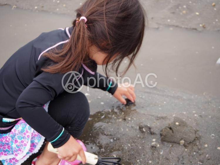 潮干狩りをする女の子の写真