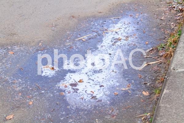 凍った水たまりの写真