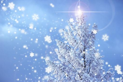 メリークリスマス 冬 雪 フレア 風 ツリー サンタクロース 夜空 青空 背景 雪の結晶 希望の光 光 輝き