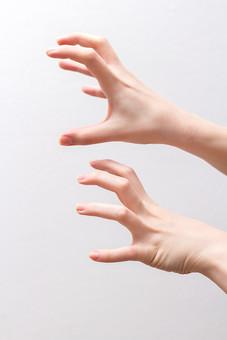 人 人間 人体 身体 人肌 肌 皮膚 手 指 手指 ゆび 関節 指の関節 デッサン 手のデッサン 手のモデル 手のポーズ  爪 白い 白背景  曲げる 指を曲げる 手首 手の甲  手の側面 両手 襲う 威嚇 掴む つかむ 求める 握る ニュアンス 表情