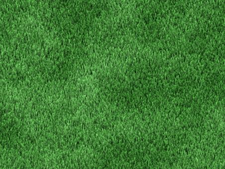芝生 しばふ 植物 背景 風景 ゴルフ場 公園 自然 緑 背景 風景 景色 バック バックイメージ 爽やか テクスチャ グリーン フィールド 大地 人工芝 天然芝 シバフ 芝生の背景 自然の背景 ぬくもり 温もり 球場