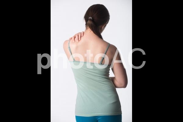 女性の背中3の写真