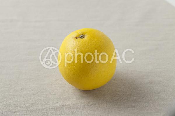 グレープフルーツの果実の写真