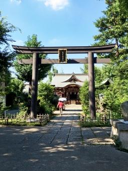 東京都 中野区 神社仏閣 鷺宮 西武新宿線 散歩 ウォーキング さぎのみや