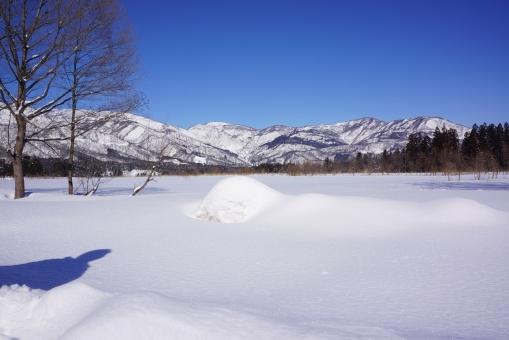 雪山 雪原 雪 冬 春 青空 木 森 新潟 北陸 スキー スノーボード 自然 銀世界 綺麗 キラキラ