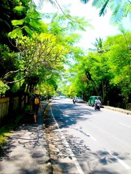 道路 バリ バリ島 インドネシア 南国 バイク 海外 海外旅行 旅 road trip bali island indonesia summer resort bike 夏 リゾート