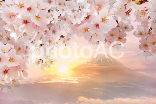 桜と富士山と夕日のロマンチックな景色の写真