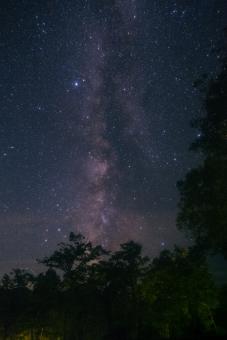 天の川 星座 星空 星野 星 夜空 七夕 おりひめ ひこぼし 夜