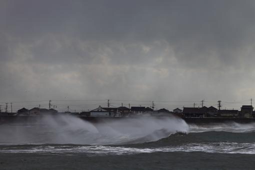 強風 #1の写真