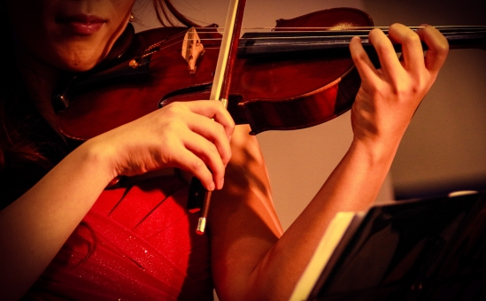 女性 ヴァイオリン 弦 弾く 綺麗 風景 オーケストラ 木製 木 茶色 楽器 音楽 ドレス 赤 弦楽器 ライブ イベント 曲 女