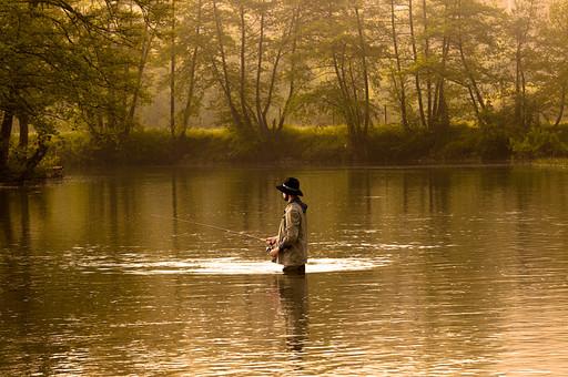 川釣り 川 河 川の中 河の中 ハット 帽子 立つ 水面 釣り フィッシング フライフィッシング アウトドア 魚 釣り人 フィッシャーマン 人物 男性 外国人 白人  景色 風景 自然 趣味 ホビー 後ろ姿 釣り竿 ロッド リール 木 林 森 緑 霧 投げ釣り キャスティング 待つ