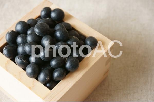 黒豆1の写真
