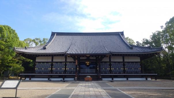 仁和寺の写真素材|写真素材なら「写真AC」無料(フリー)ダウンロードOK