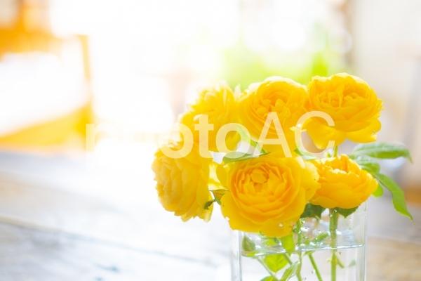 黄色いバラを花瓶に飾るの写真