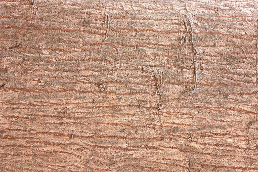 木 木の幹 樹皮 木の皮 茶色 木肌 背景 背景素材 バックグラウンド 植物 自然 テクスチャ 模様 樹木 幹