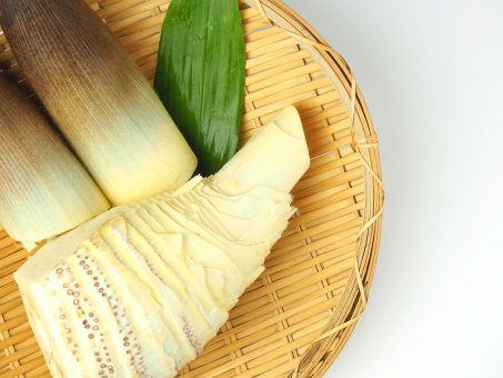 たけのこ 筍 タケノコ 竹の子 竹 野菜 旬 食材 春 夏 4月 5月 孟宗竹 モウソウチク 旬の食材 竹の子掘り 和食 日本料理 素材 自然 植物 バンブー レシピ 下ごしらえ 竹林 煮物 アク抜き 竹の皮