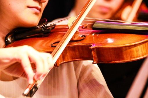 ヴァイオリン 音楽 引く ミュージック 世界 音色 ライブ オーケストラ 木製 木 女性 男性 男 女 綺麗 きれい 合奏 楽器