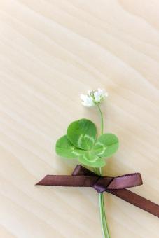 四葉 クローバー 植物 草 四葉のクローバー 幸運 グリーン 緑 シロツメクサ シロツメグサ 草花 花 花束 四ツ葉 四つ葉 お守り ラッキーアイテム