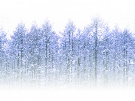 冬 クリスマス メリークリスマス くりすます 12月 正月 お正月 年賀状 賀正 雪 雪景色 背景 冬の背景 雪国 メッセージカード サンタ 雪景色 真冬 11月 謹賀新年 正月背景 クリスマス背景 ハロウィン web素材 web背景 バックグラウンド バックイメージ バック 背景素材 スノー