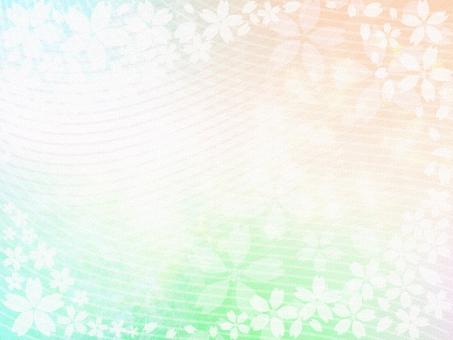 桜 さくら サクラ 背景 風景 景色 バック バックイメージ 桜の背景 桜の風景 和紙 和風 壁紙 桜の花 桜の壁紙 桜の壁画 桜の和紙 テクスチャ 入学 入園 卒業 卒業式 入園式 入学式 SPRING 花見 お花見 綺麗な桜 春